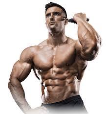 Musculin Active - jak používat - výrobce - Účinky