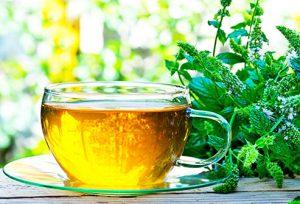 Herbal Tea - akční - lékárna - forum