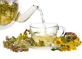 Herbal Tea Anti Parasite - akční - česká republika - lékárna